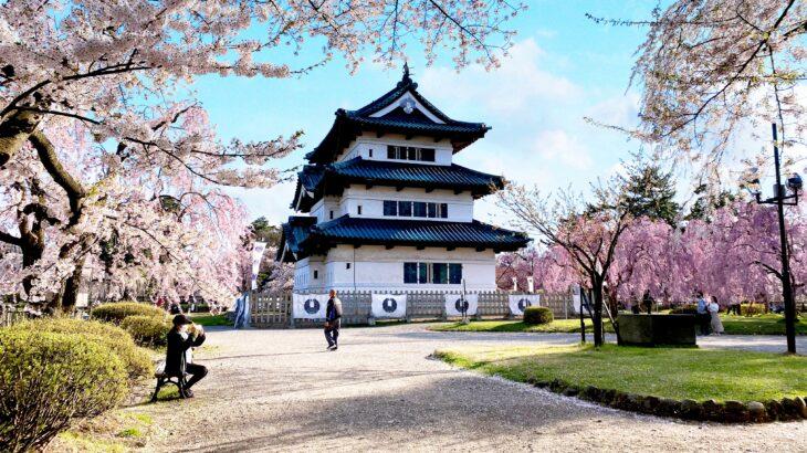 【日本一の桜と城】和洋折衷な弘前の街をサイクリング!